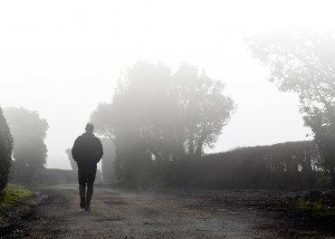 Lenny-Morning-Mist